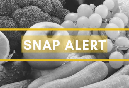 Note for Snap Users