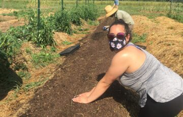 Managing a Farm During a Pandemic